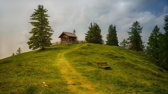 chatička na kopci